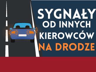 sygnały od innych kierowców na drogach